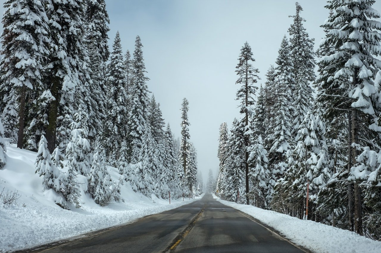pexels photo 103644 - Travel Tip - Holiday Road Trips
