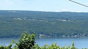 Seneca Lake  300x169 - Meet Chris and June - 4 Reasons to Trust the Universe While Traveling
