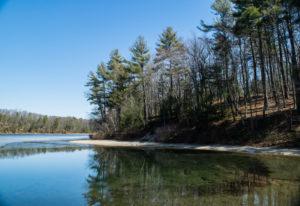 walden pond thoreau 5 300x206 - The Nomad's Pilgrimage to Walden Pond